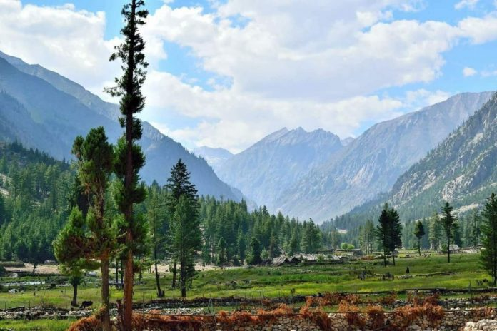 Scope of Environmental Science in Pakistan 2020