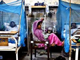 How to Identify Dengue Fever in Pakistan